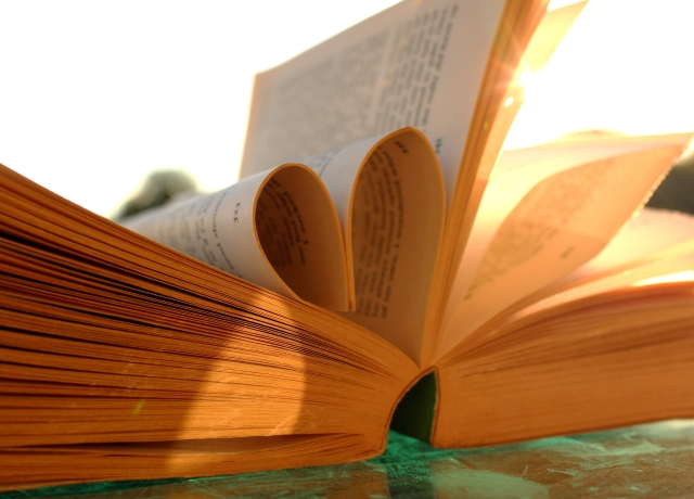 5 books I loved this year summer reading recommendations