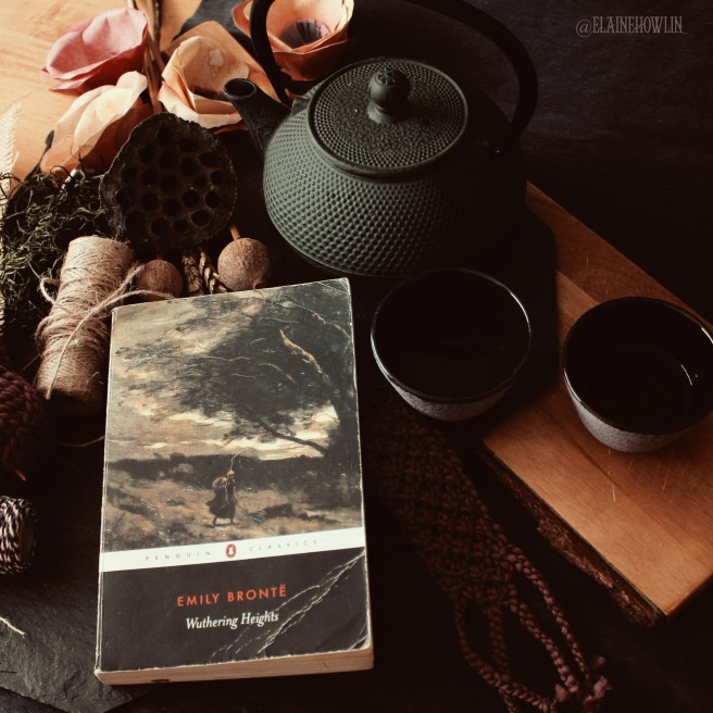 Wuthering Heights by Emily Bronte Elaine Howlin Literary Blog Gothic Reads for Autumn