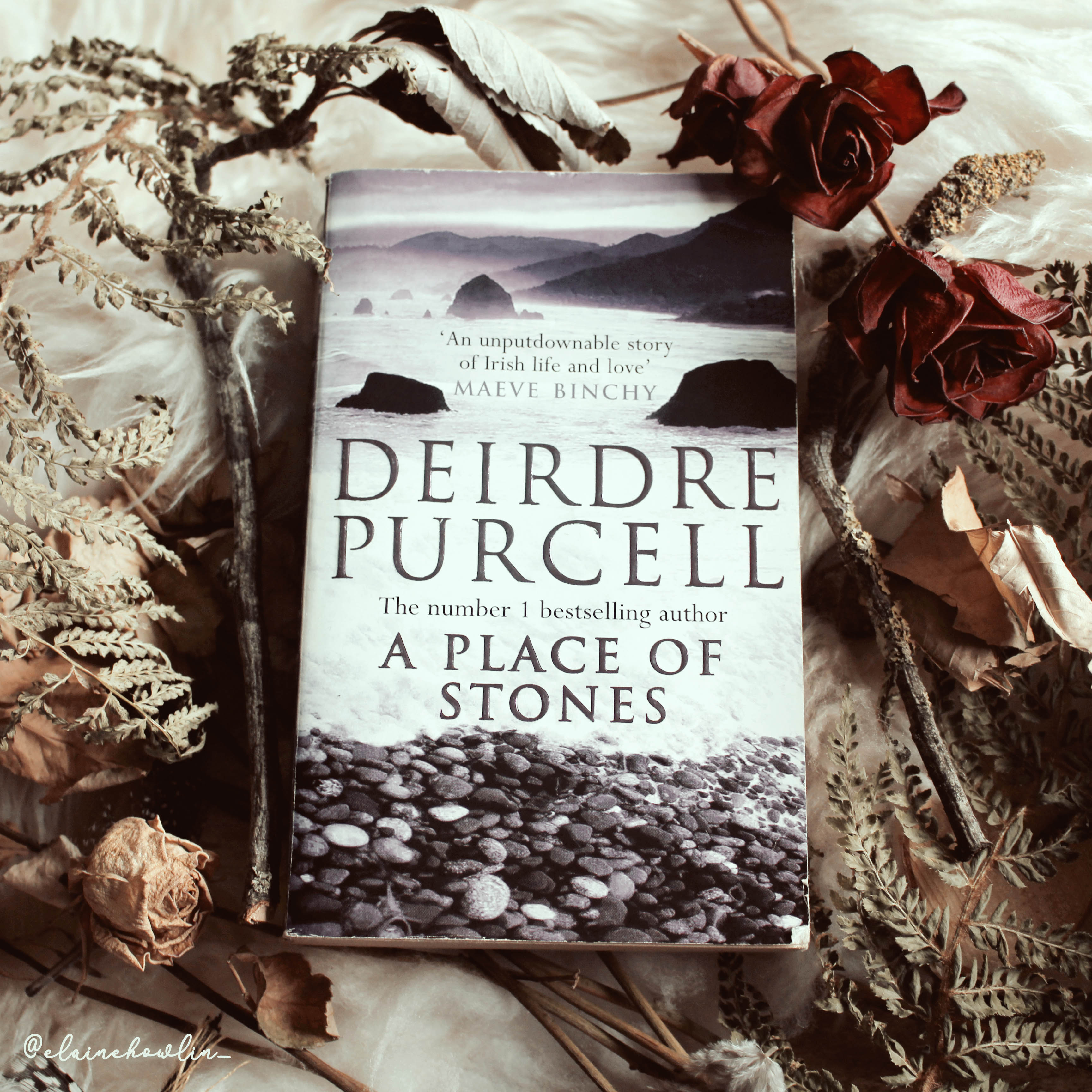 A Place of Stones by Deirdre Purcell Elaine Howlin Literary Blog