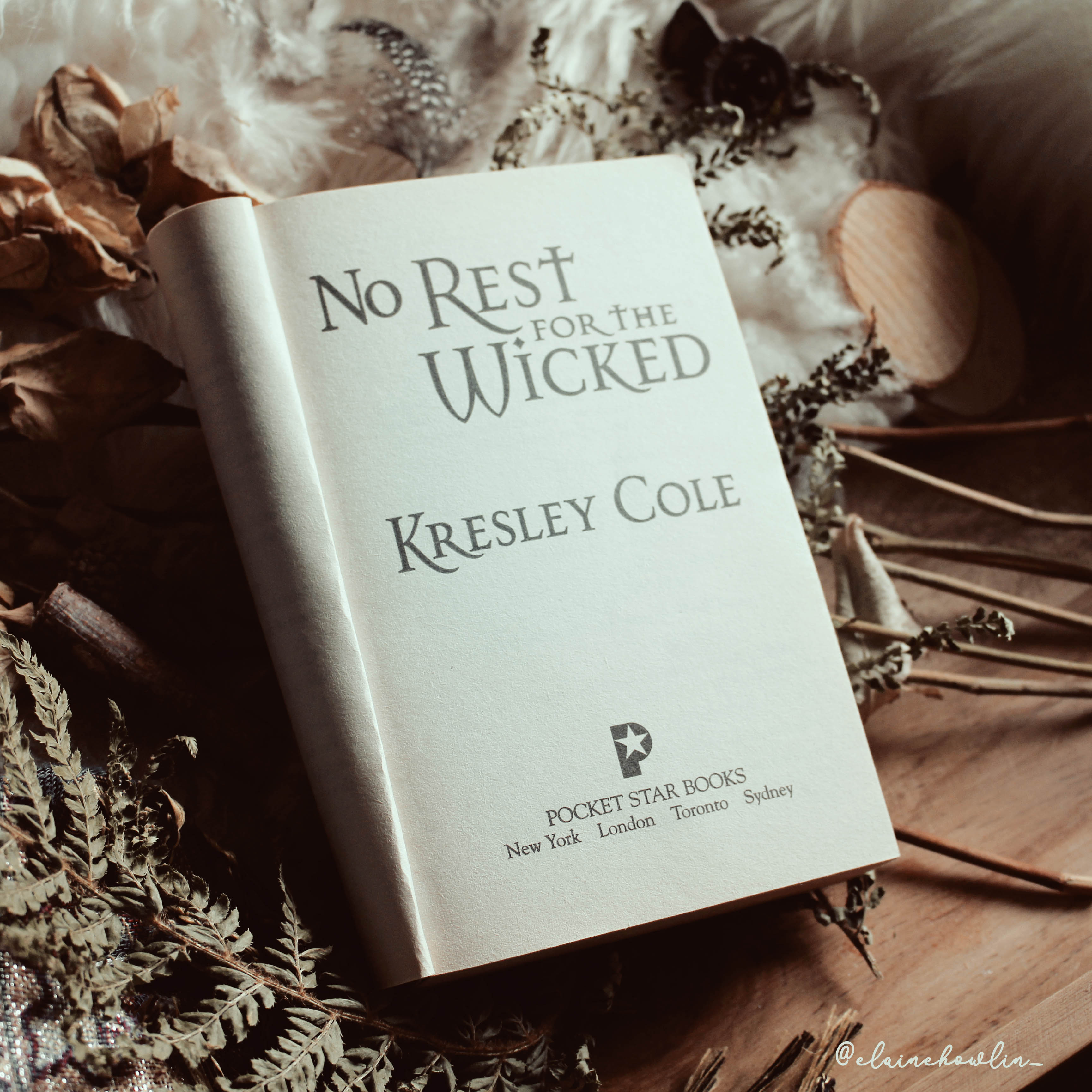 No Rest for the Wicked by Kresley Cole Immortals After Dark Elaine Howlin Book Blog 2