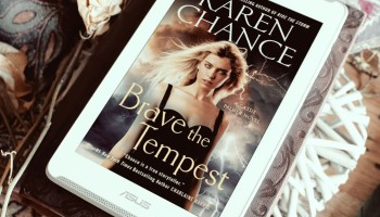 Brave the Tempest by Karen Chance Elaine Howlin Book Blog