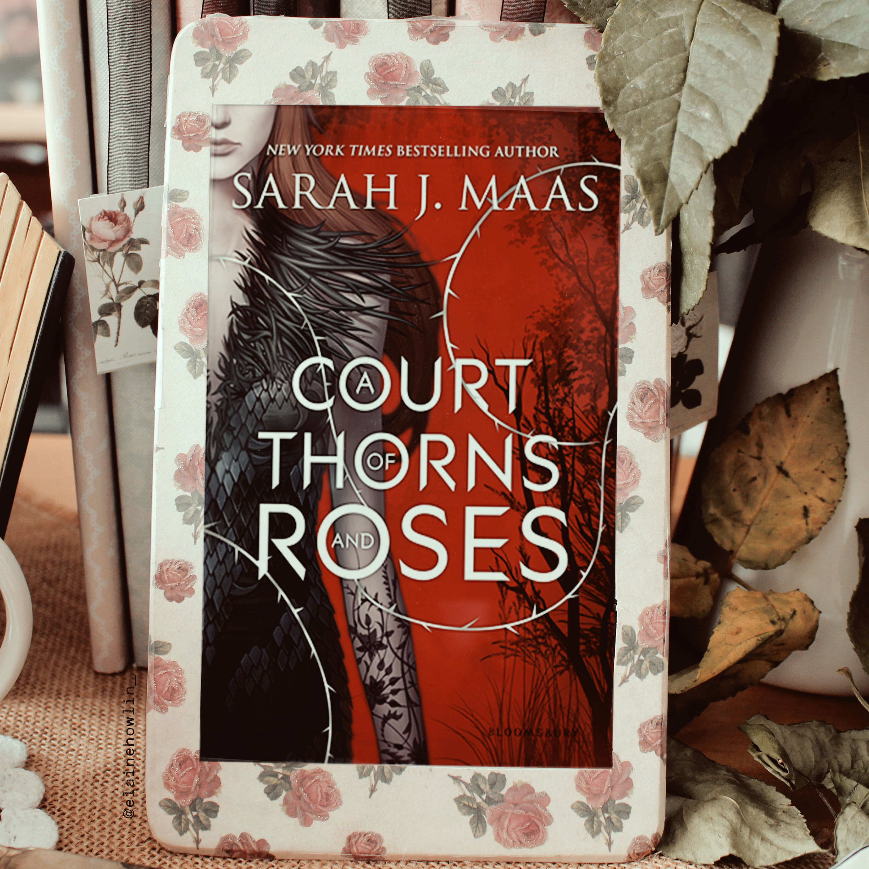 A Court of Thorns and Roses by Sarah J Maas Elaine Howlin Bookstagram