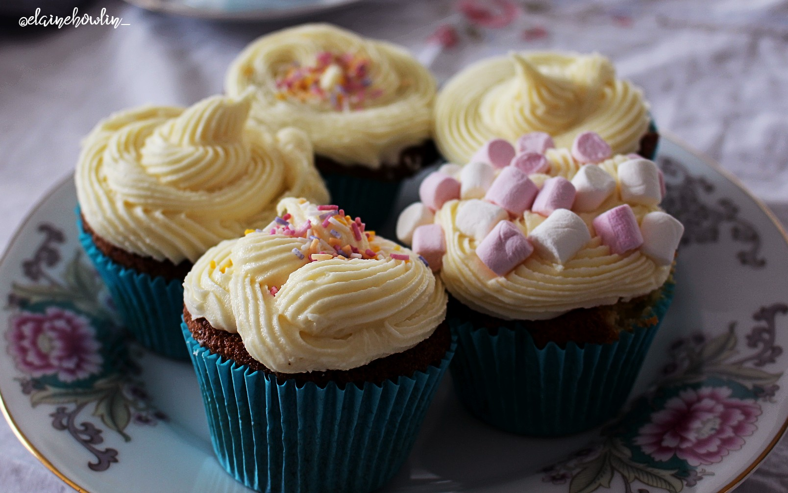 Cupcakes Elaine Howlin